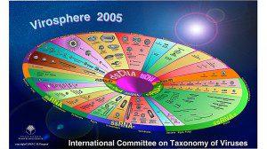 virosphere-2005