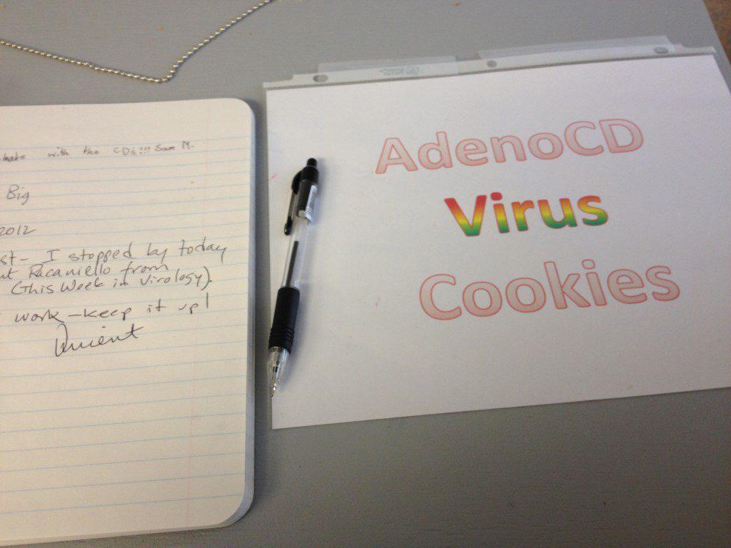 adenoCD virus