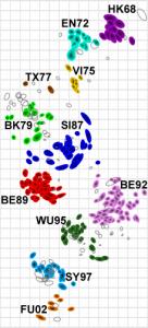 antigenic-map