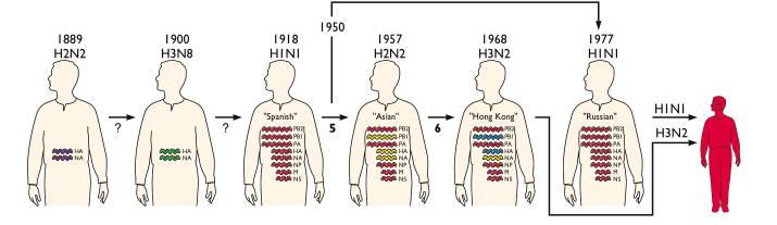 pandemic-influenza