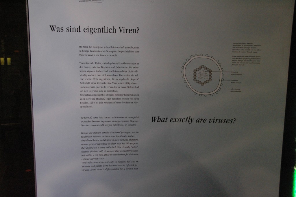 what are viruses? detail
