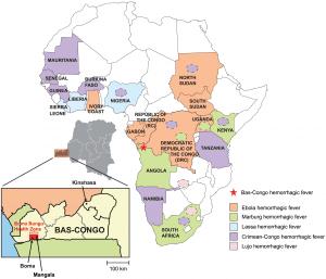 Viral hemorrhagic fevers in Africa