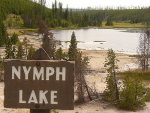 Nymph Lake, Yellowstone National Park