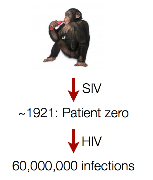 Origin of HIV