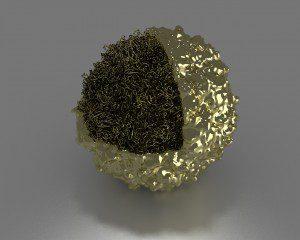 gold poliovirus