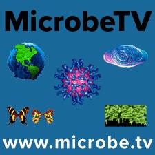 MicrobeTV